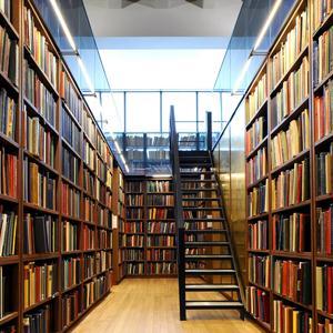 Библиотеки Прямицыно
