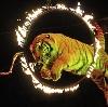 Цирки в Прямицыно